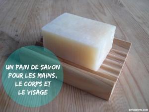 pain-de-savon-echosverts-com