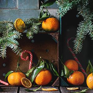 ob_b9479a_driedfruit-300-1